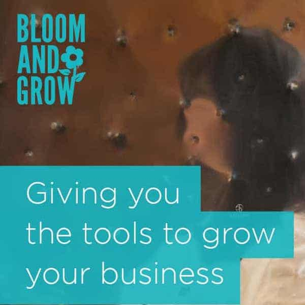 bloom and grow, grow your business, women in business, business and entrerprise, lancashire, cumbria