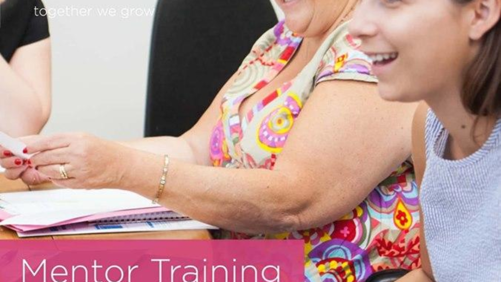 Mentor Training Course for Business Owners