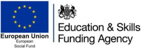 ESF & ESFA Logo Pair